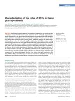 Characterization of the roles of Blt1p in fission yeast cytokinesis