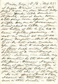 Letter from Anne Whitney, to Adeline Manning, 1876 August 25