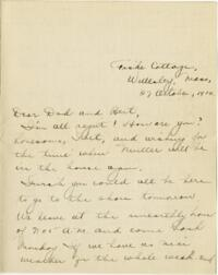 Letter from Eleanor Blair, Wellesley, Massachusetts, to Mr. D.C. Blair, Montour Falls, New York, 1916 October 27